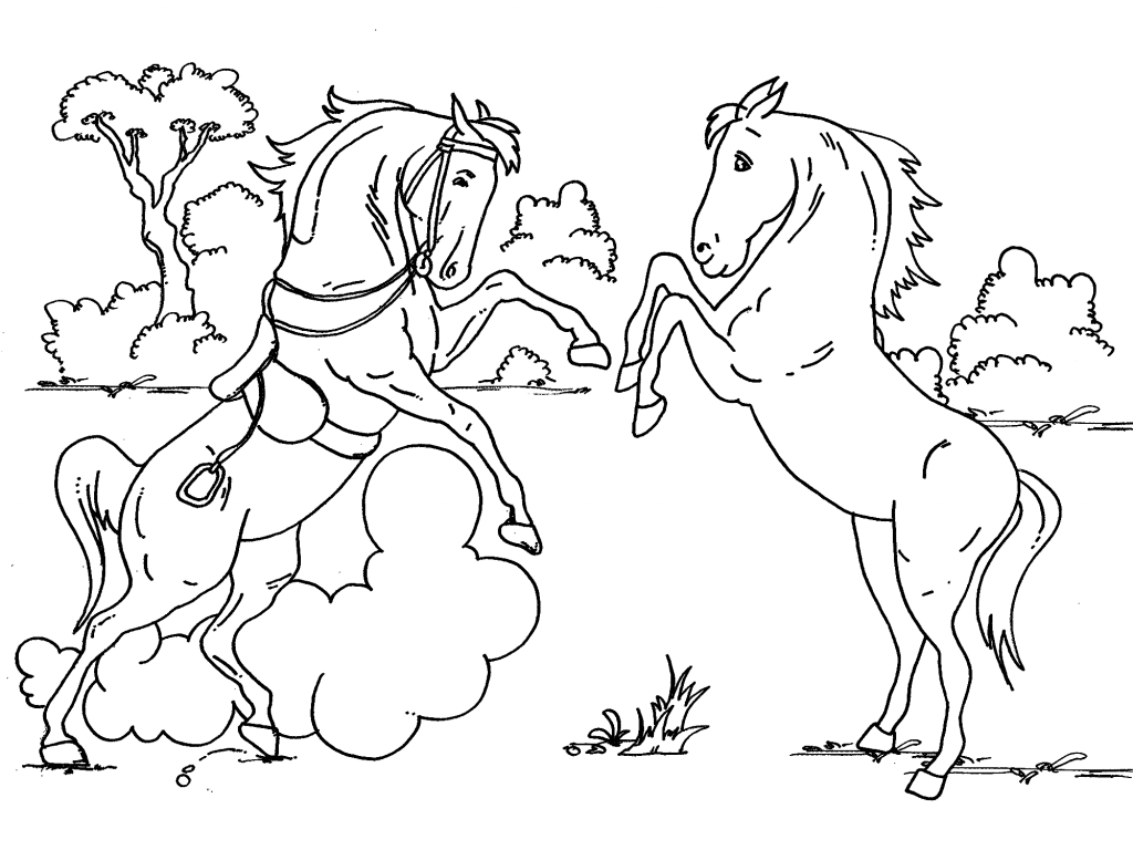Coloring page baby horse