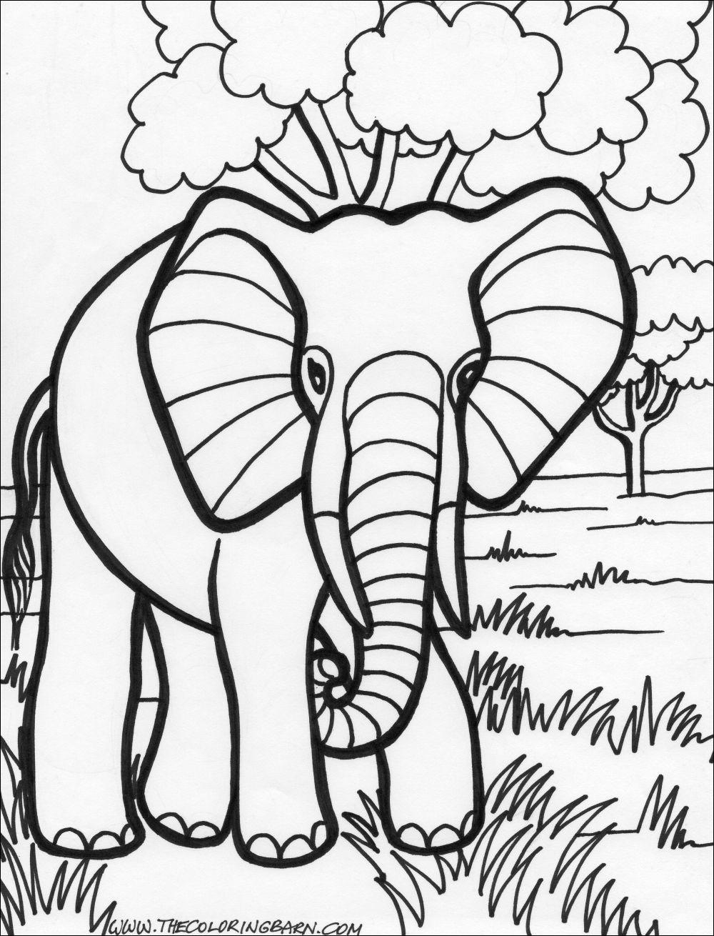 Hình ảnh chú voi đi dạo trên đồng - tranh tô màu