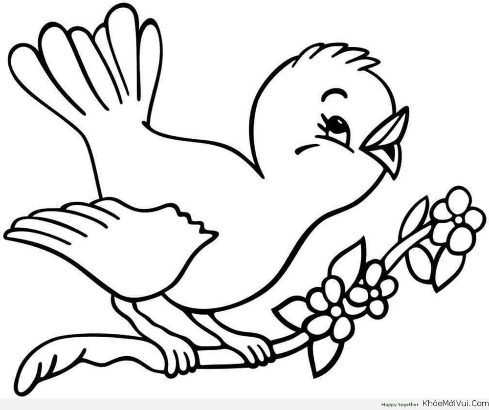 hình chú chim