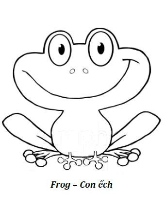 hình chú ếch con