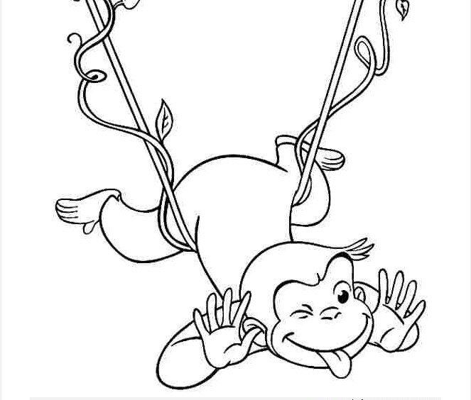 hình chú khỉ đáng yêu