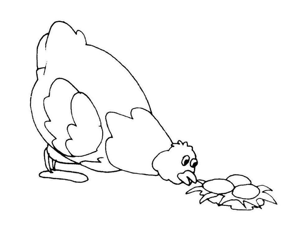 hình con gà mái