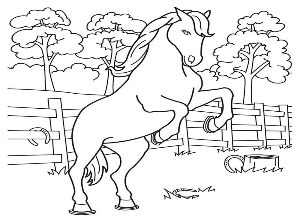 hình con ngựa hí