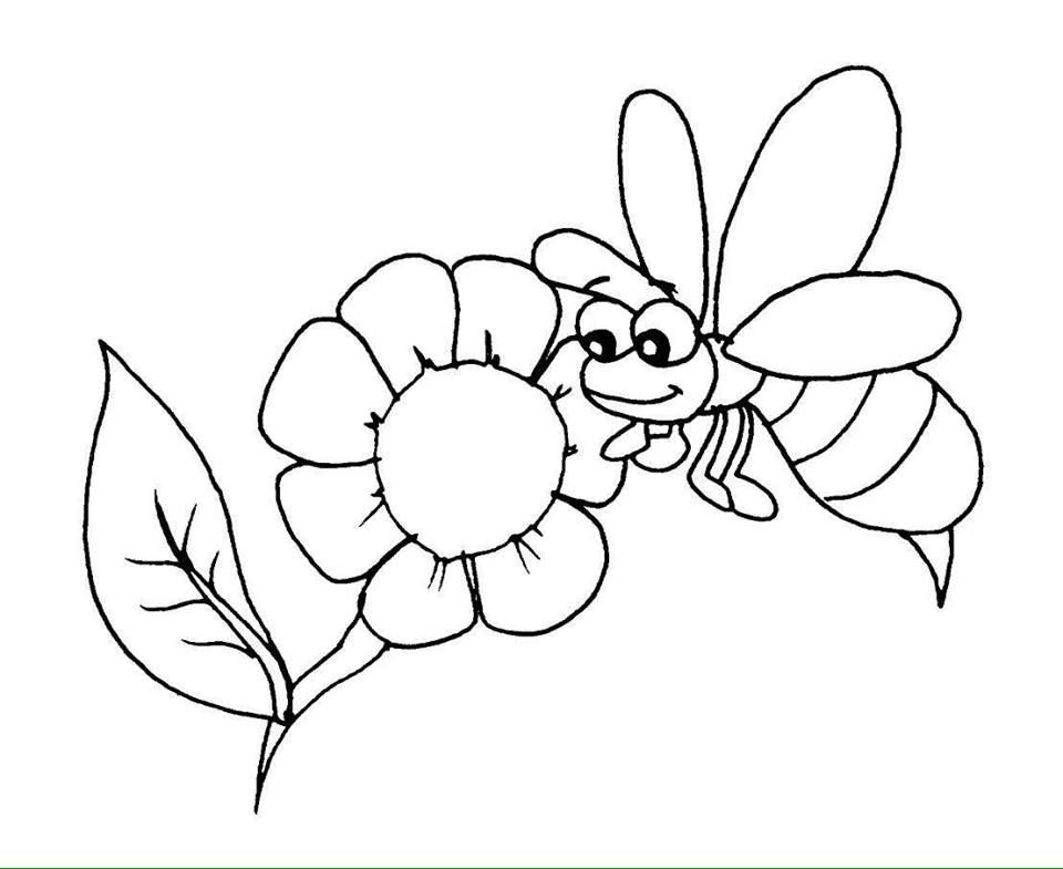 hình con ong hút mật