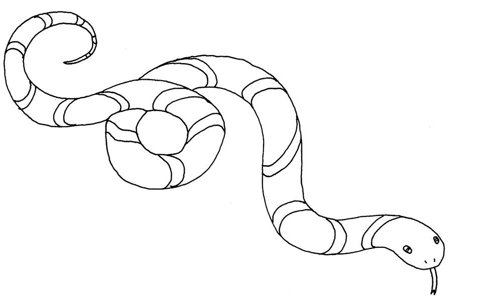 hình con rắn