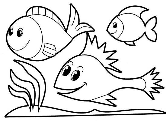hình đàn cá