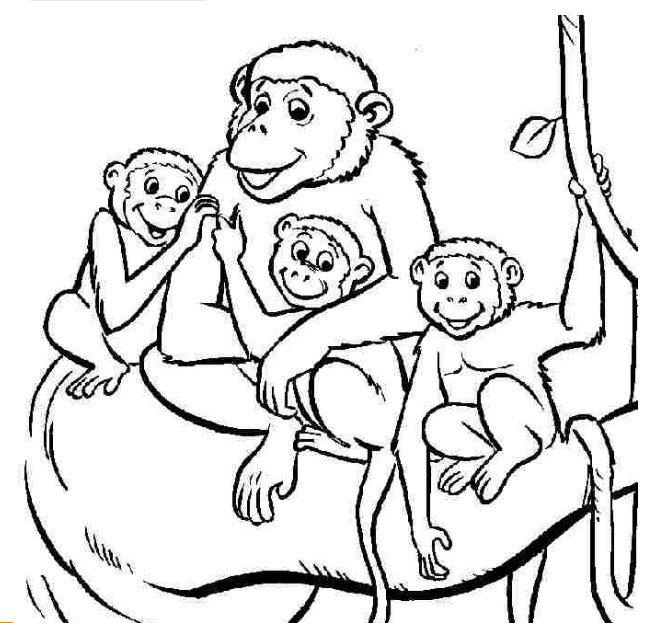 hình khỉ mẹ và những chú khỉ con