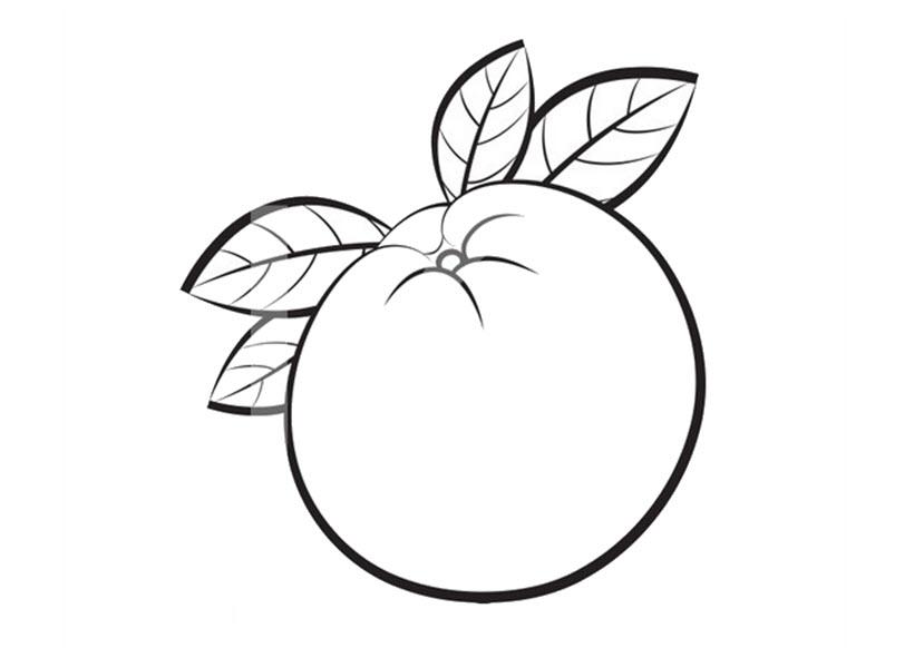 Teanh tô màu cho bé hình quả cam