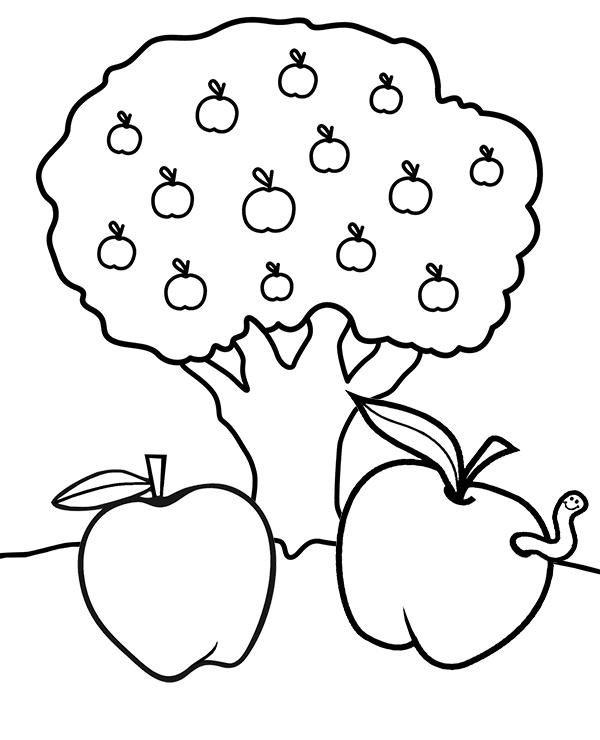 Tranh cây táo tô màu