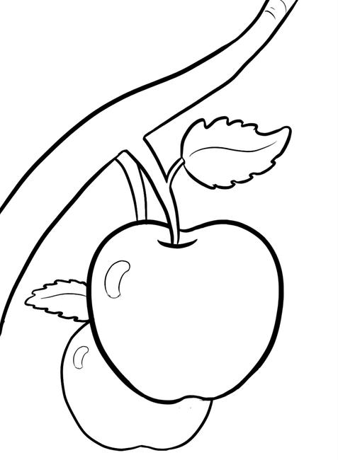 Tranh quả táo trên cây