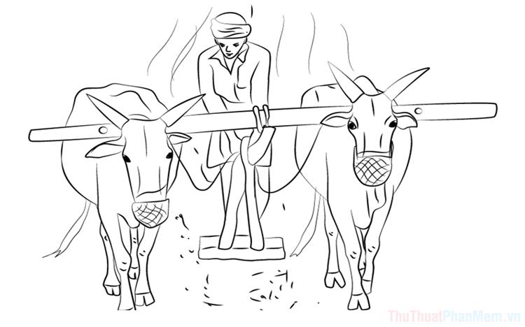 Tranh tô màu bác nông dân