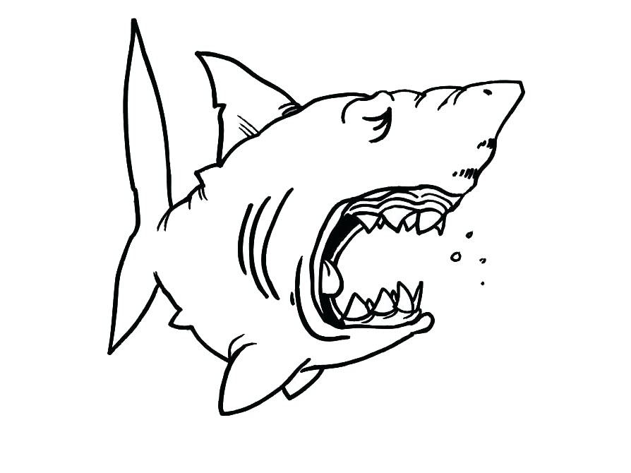 Tranh tô màu cá mập đang ngạc nhiên
