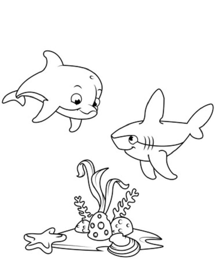 Tranh tô màu cá mập dưới nước