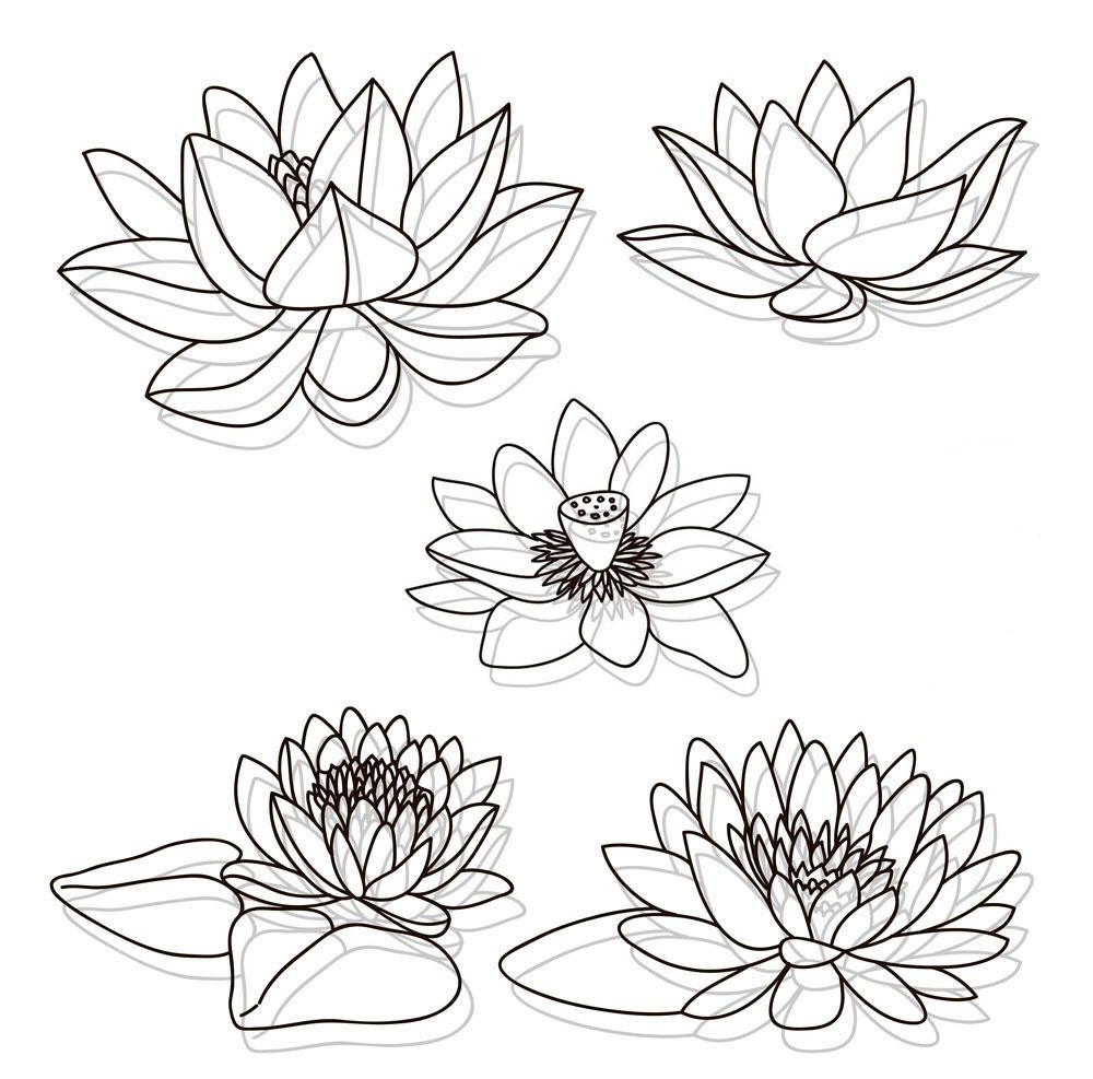 Tranh tô màu các bông hoa sen