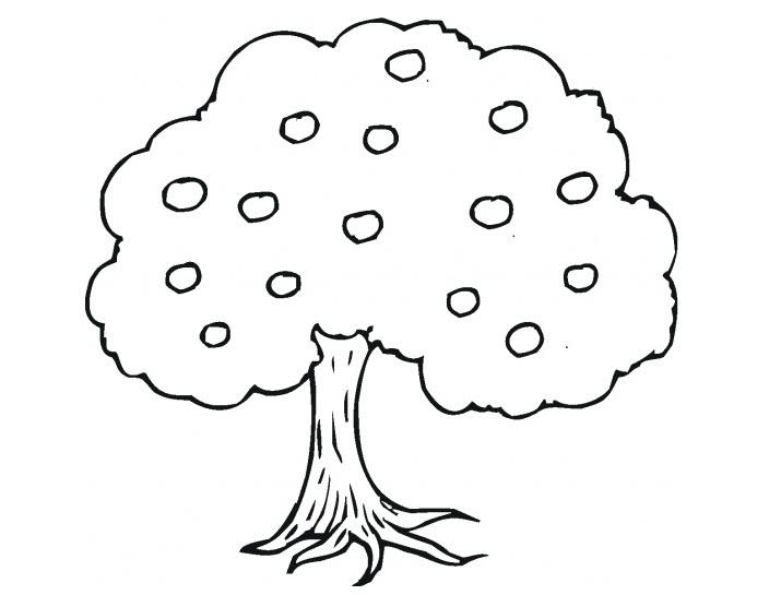 Tranh tô màu cái cây cho bé 3 tuổi