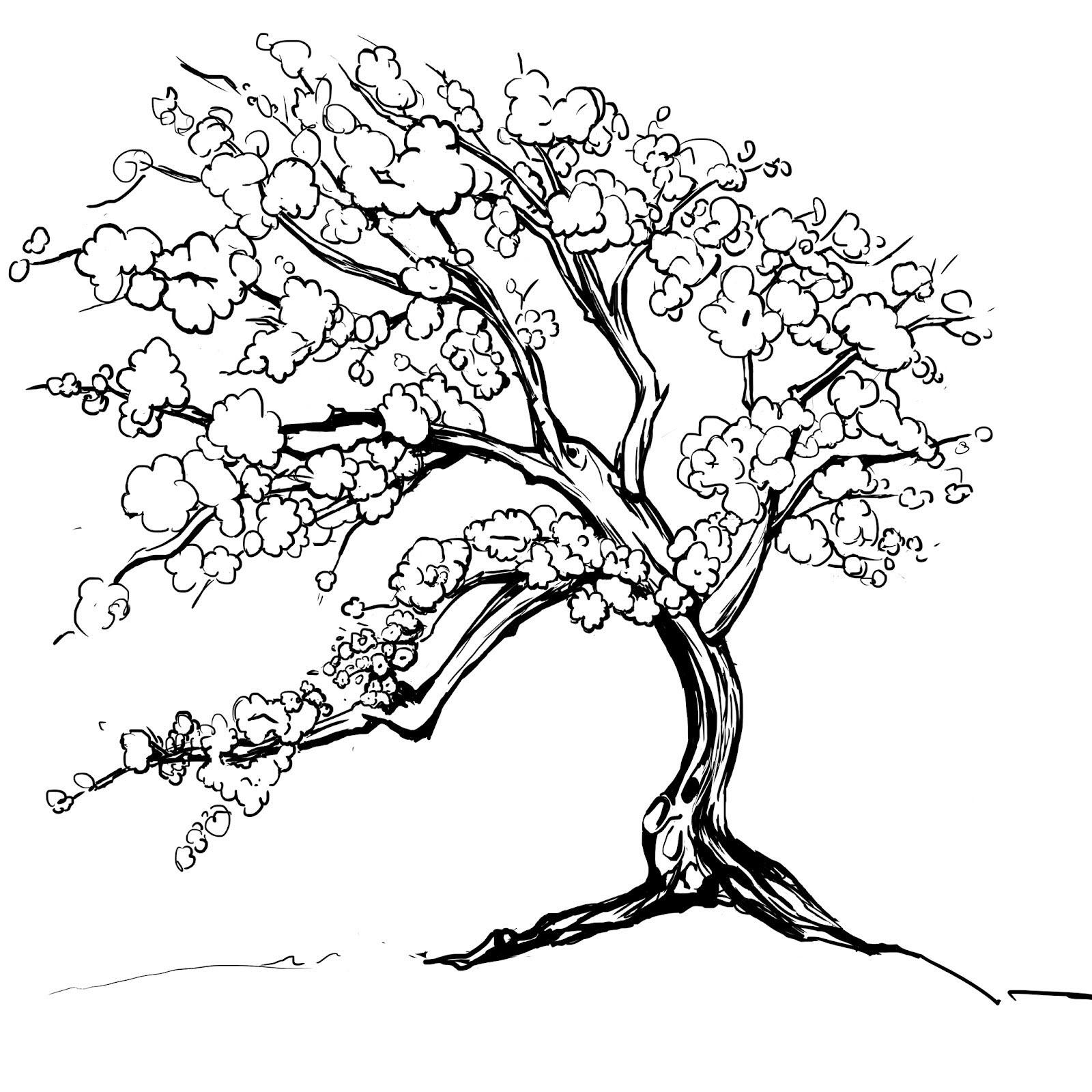 Tranh tô màu cây hoa đào đẹp
