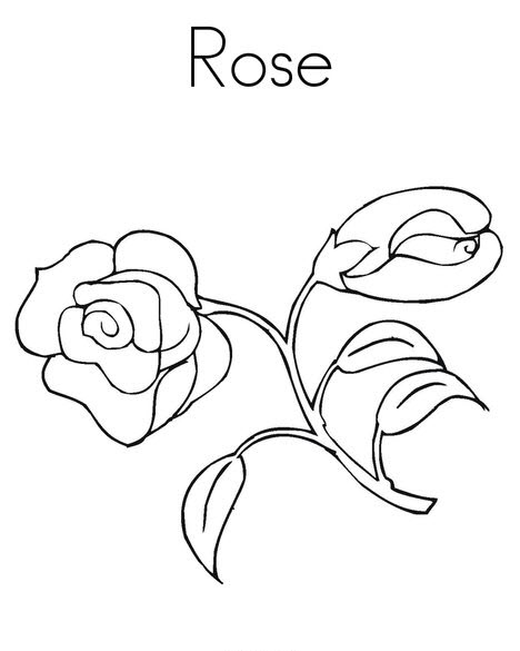 Tranh tô màu cây hoa hồng đơn giản
