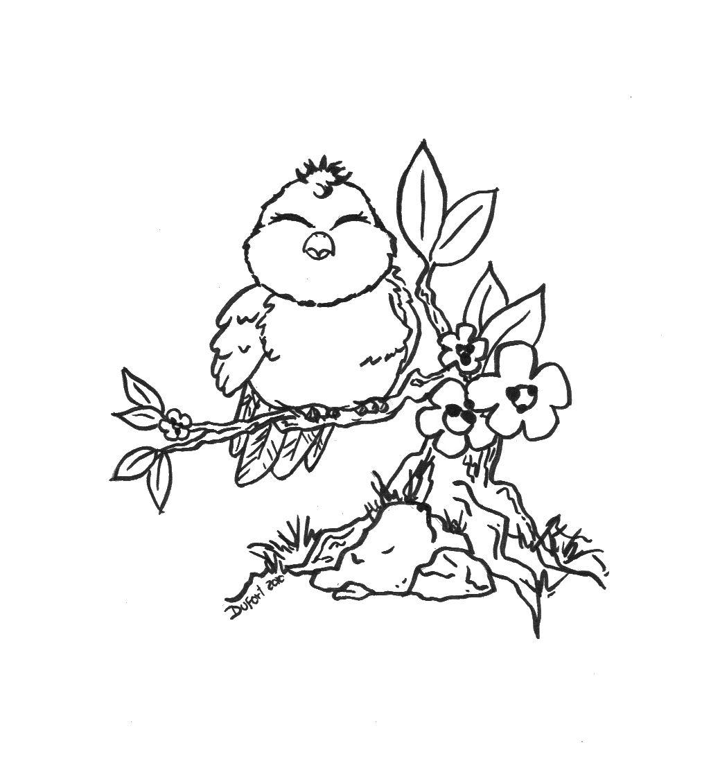Tranh tô màu chim con bé bỏng