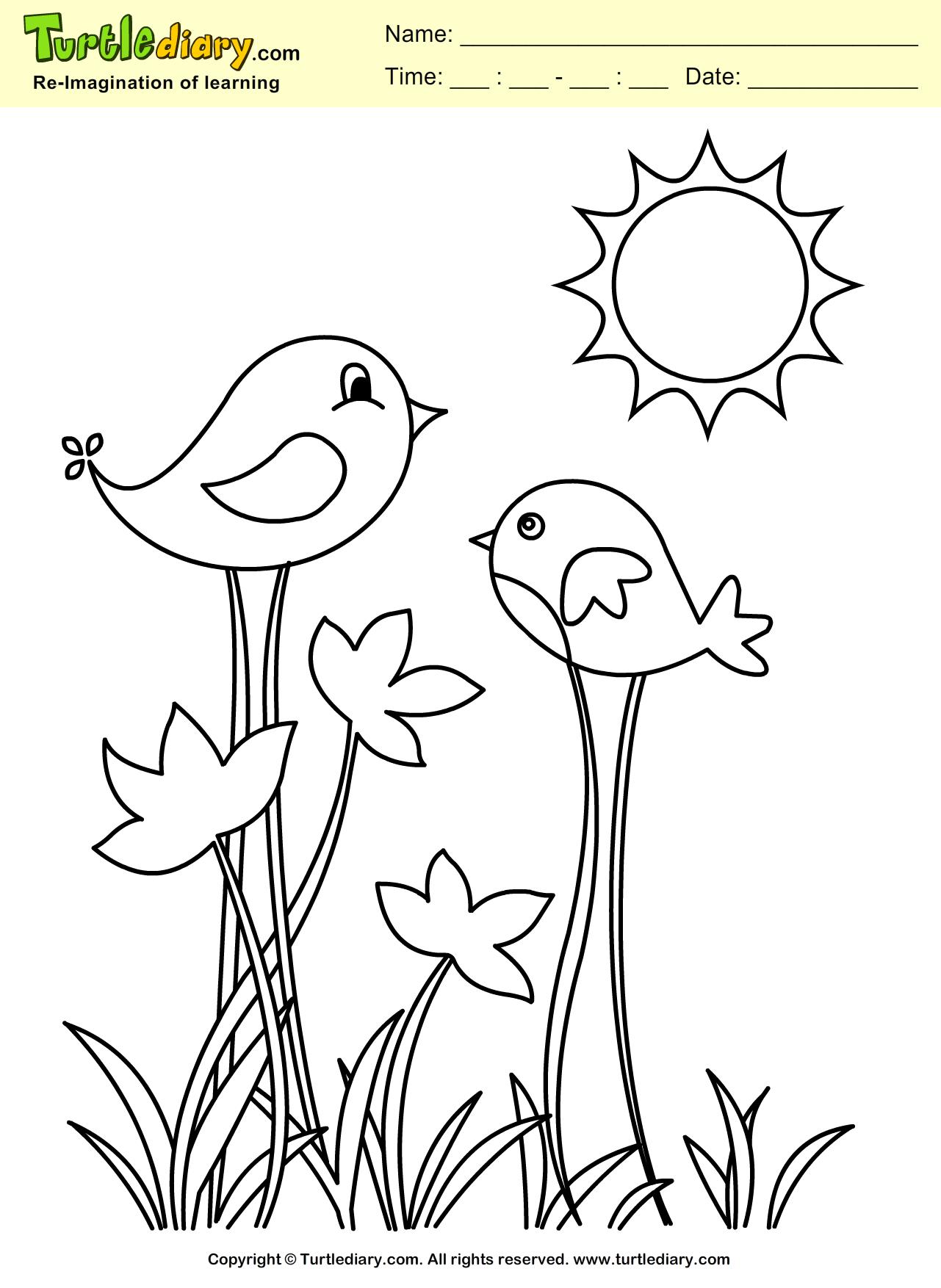 Tranh tô màu chim trong vườn