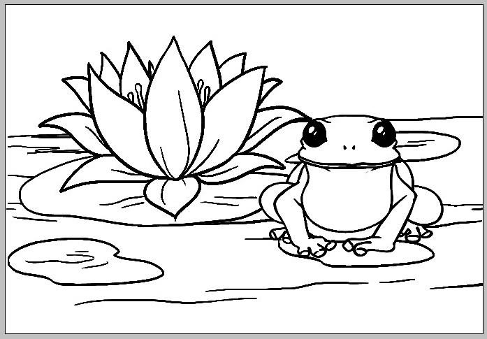 Tranh tô màu chú ếch và hoa sen