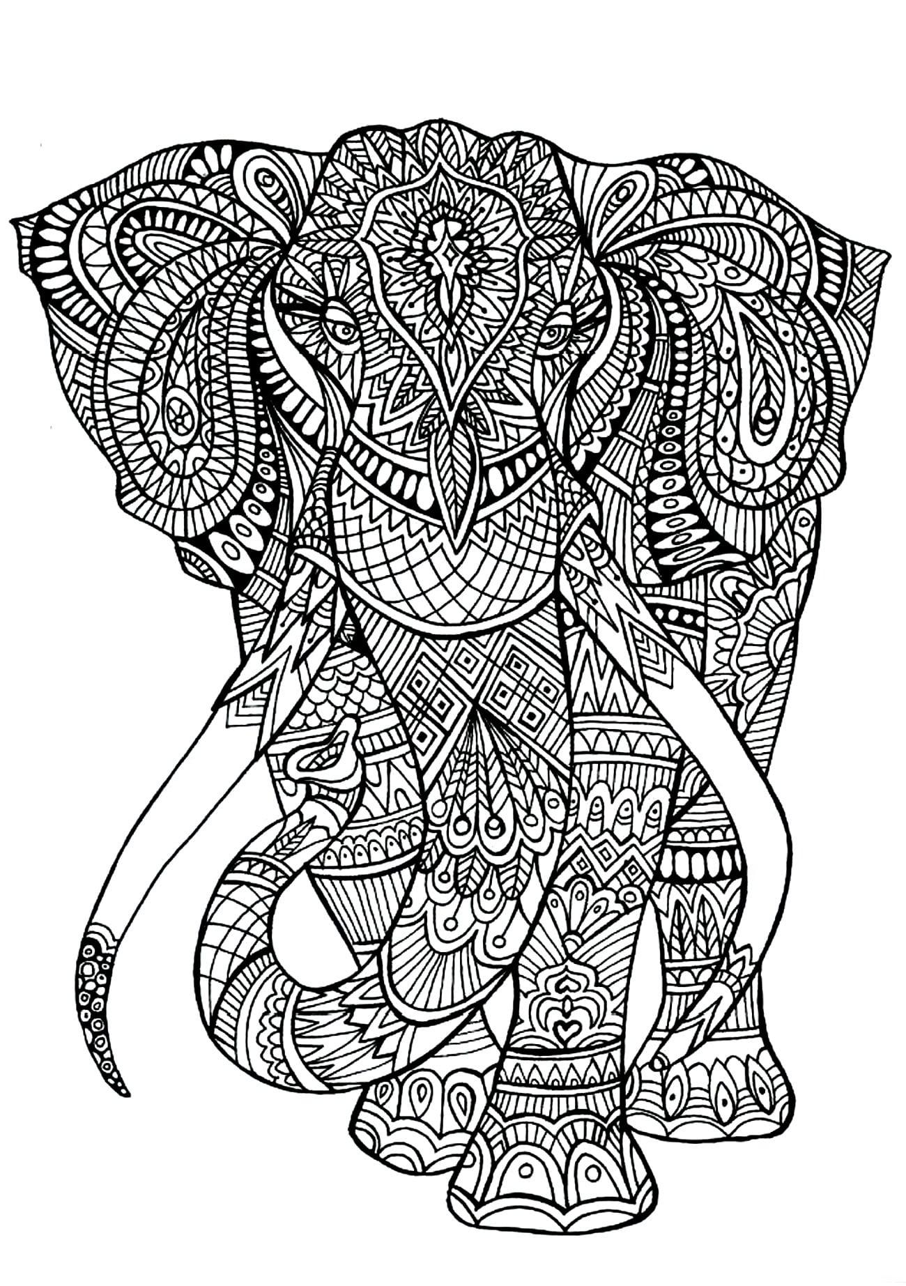 Tranh tô màu chú voi to lớn và hai ngà to