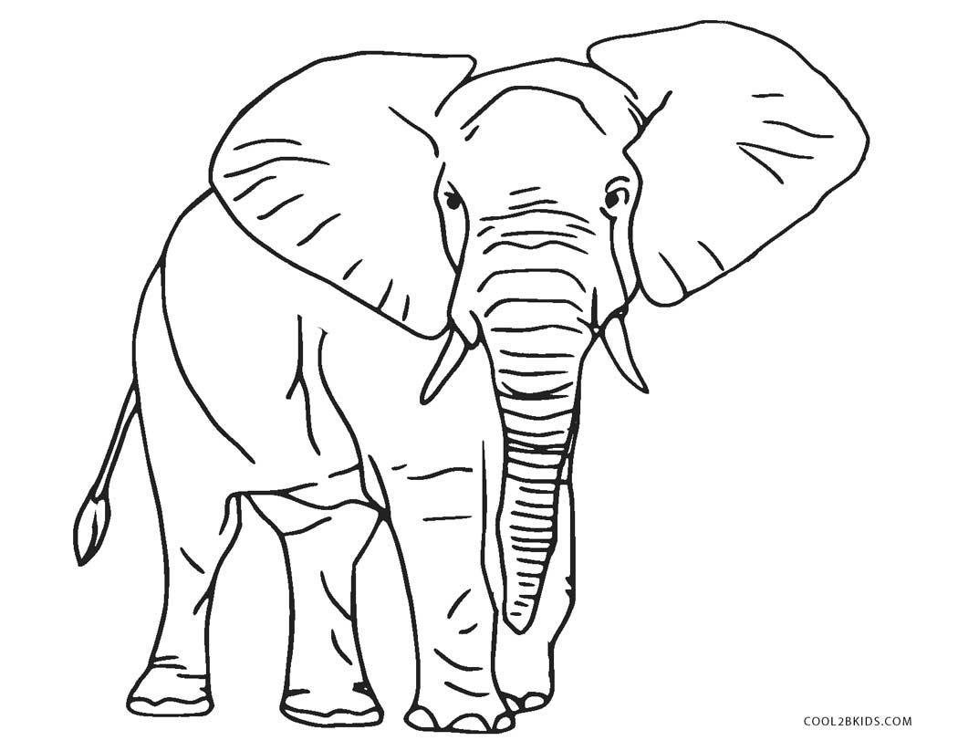 Tranh tô màu chú voi to lớn