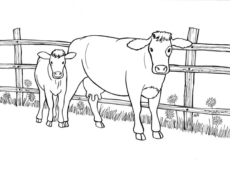 Tranh tô màu con bò mẹ và bò con