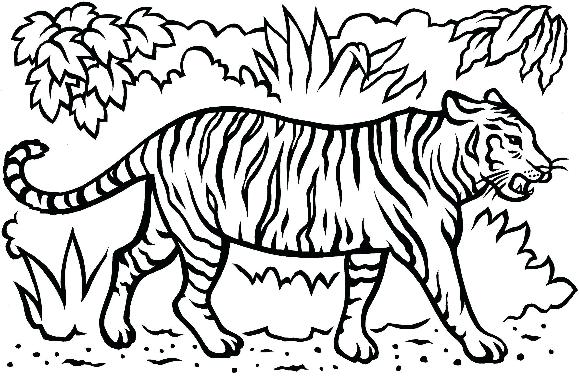Tranh tô màu con hổ bước đi trong rừng