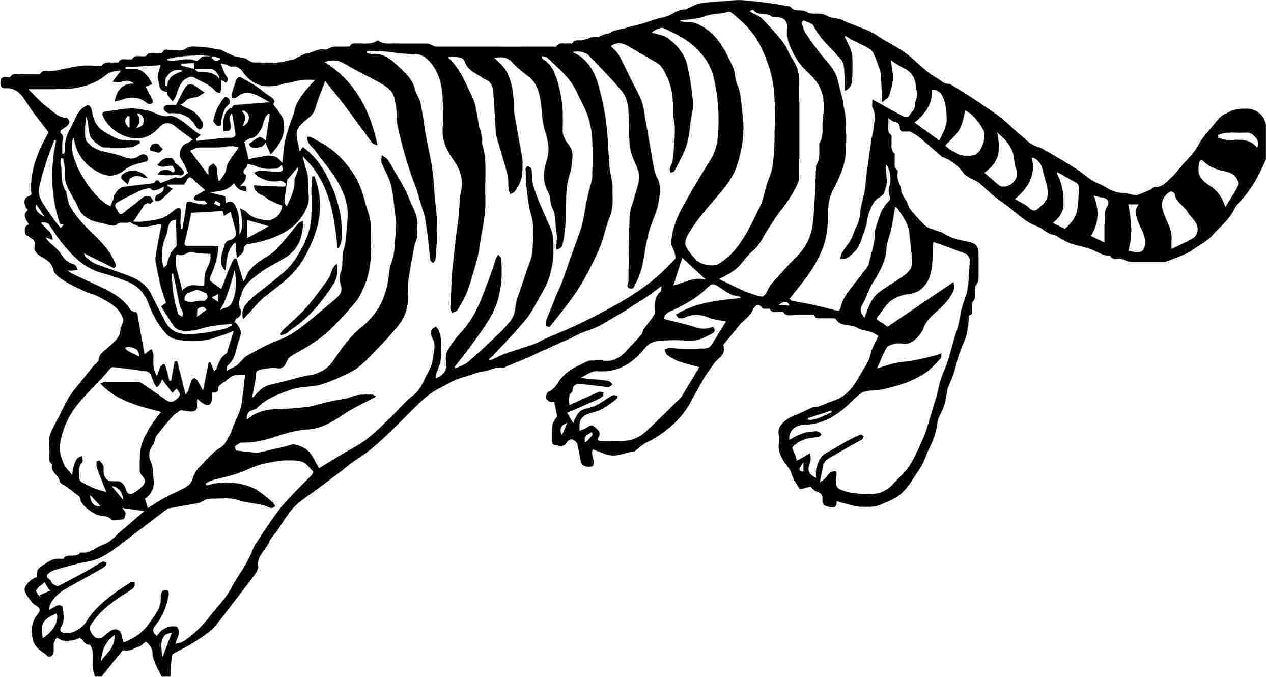 Tranh tô màu con hổ đang gào