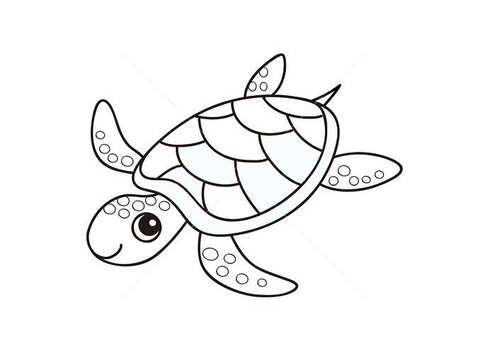 Tranh tô màu con rùa cho bé 3 tuổi