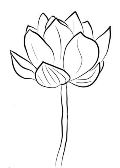 Tranh tô màu đoá hoa sen