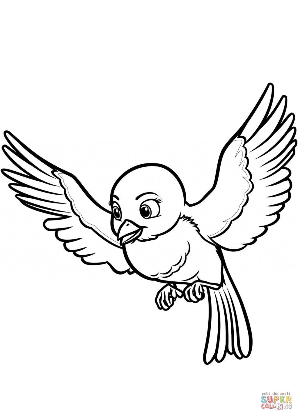 Tranh tô màu hình chim cái