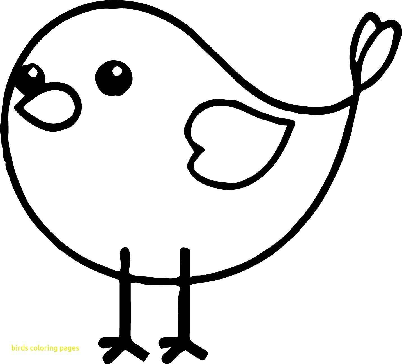Tranh tô màu hình con chim