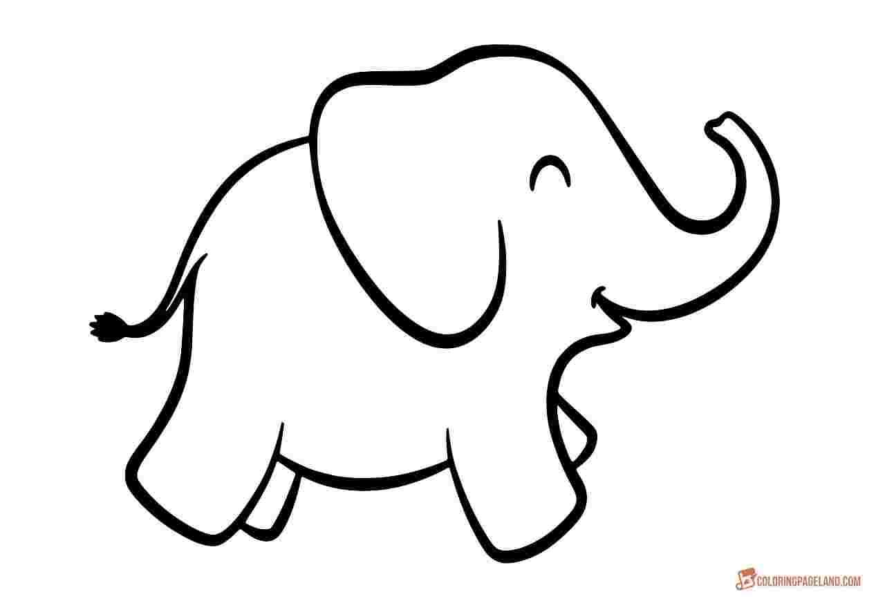 Tranh tô màu hình con voi cực đẹp