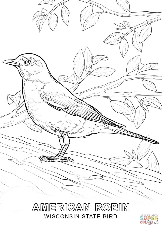 Tranh tô màu hình đáng tả thực hình con chim