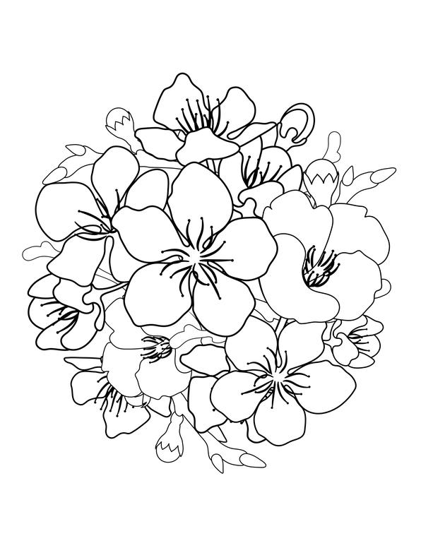 Tranh tô màu hoa đào cho bé