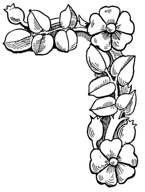 Tranh tô màu hoa đào nhỏ