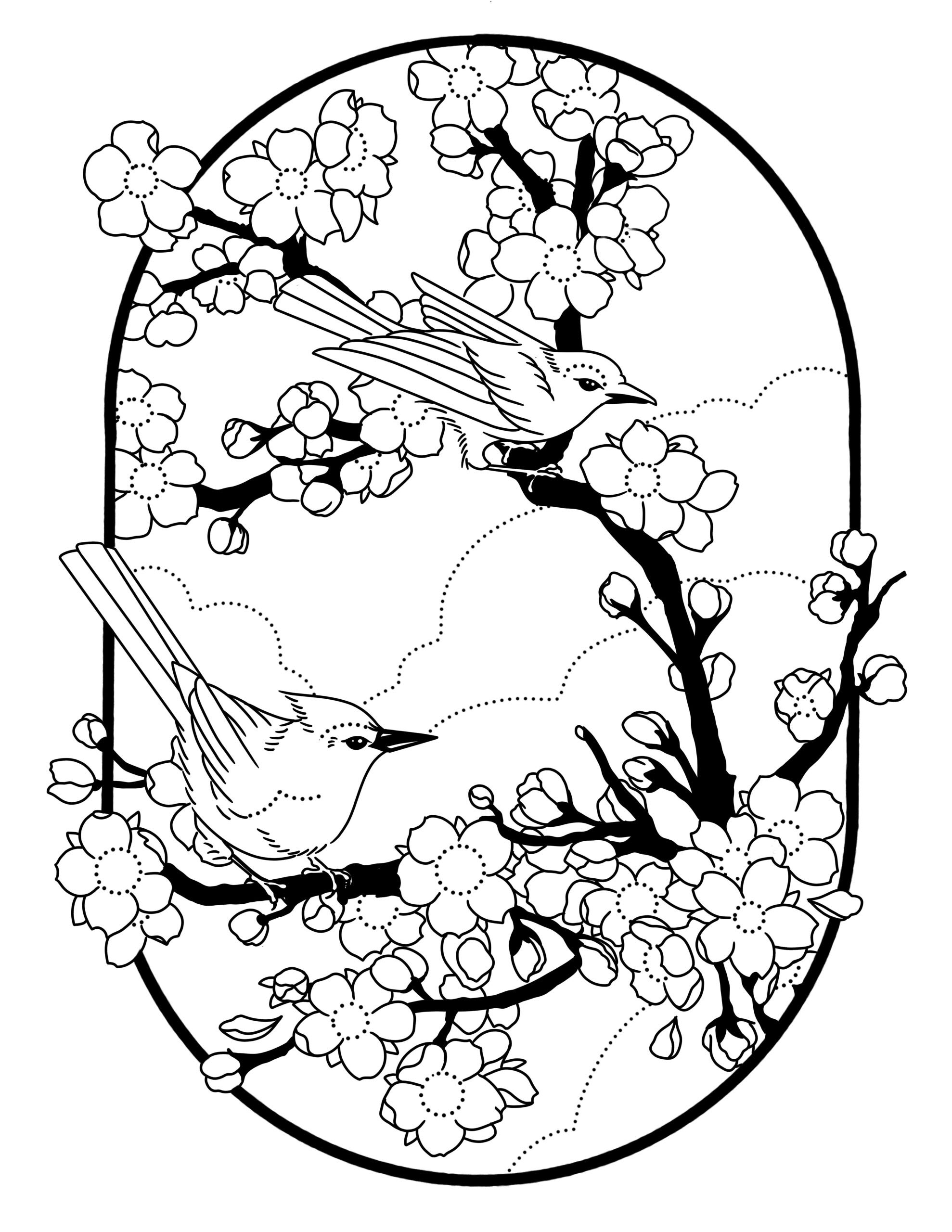 Tranh tô màu hoa đào trang trí