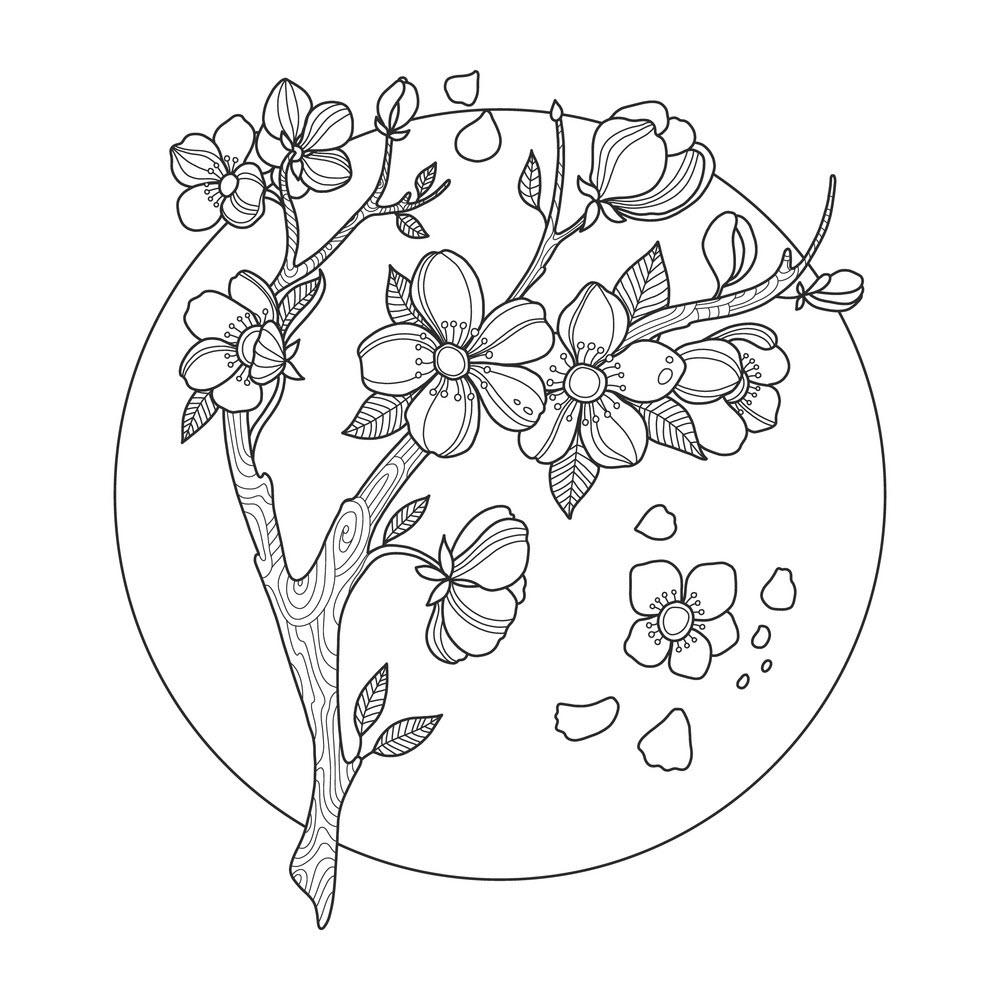 Tranh tô màu hoa đào