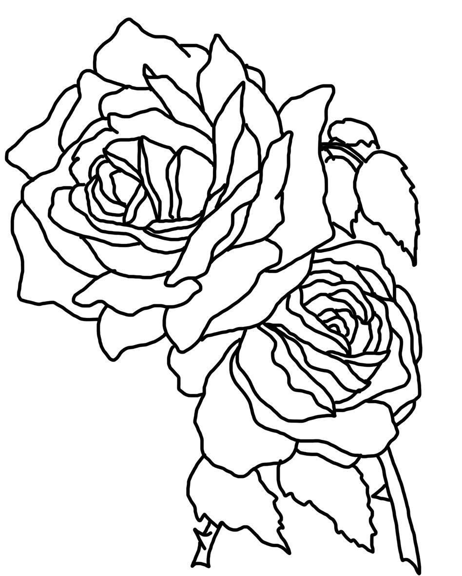 Tranh tô màu hoa hồng đơn giản đẹp