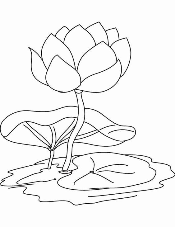 Tranh tô màu hoa sen chuẩn