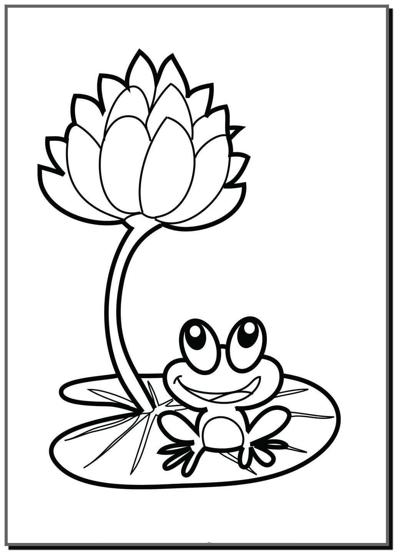 Tranh tô màu hoa sen và chú ếch