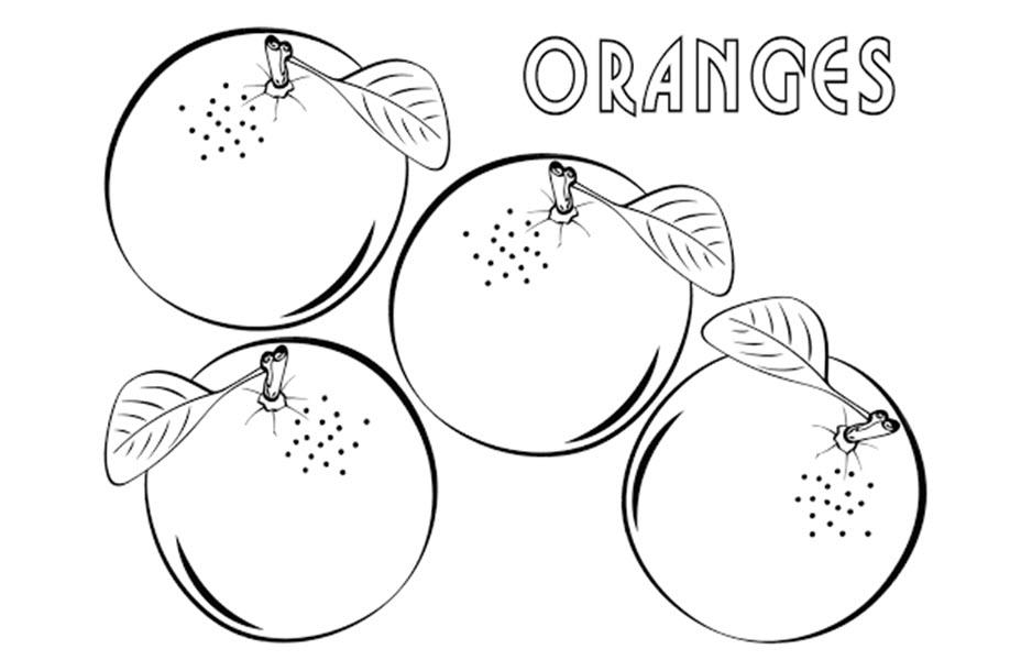 Tranh tô màu những quả cam đẹp