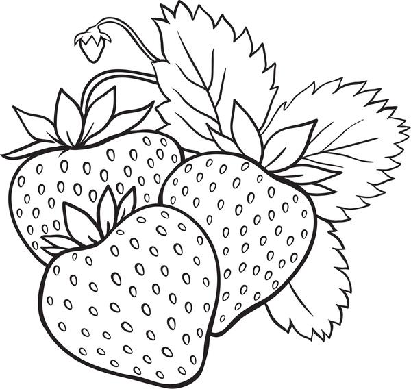Tranh tô màu quả dâu tây chín
