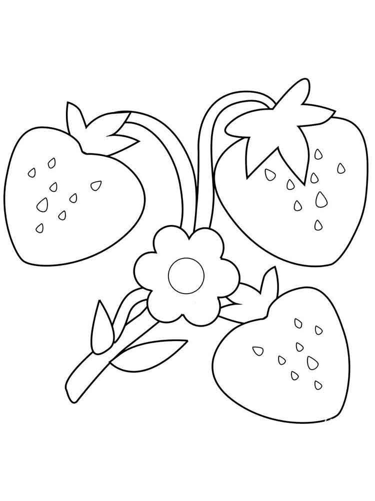 Tranh tô màu quả dâu tây độc đáo