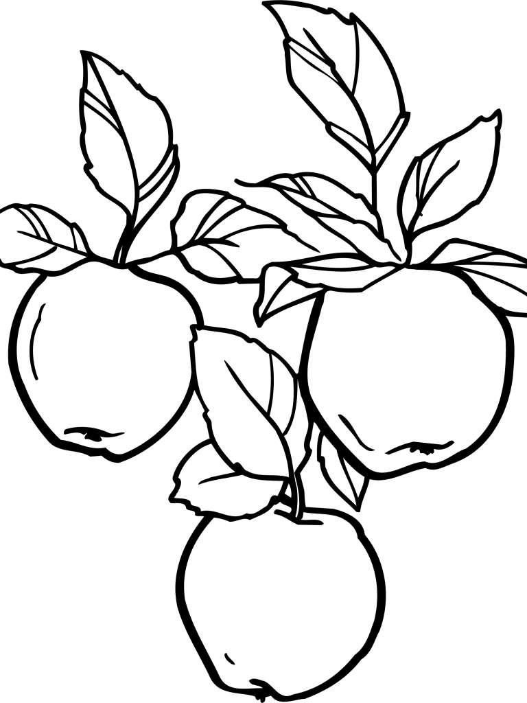 Tranh tô màu quả táo nhỏ