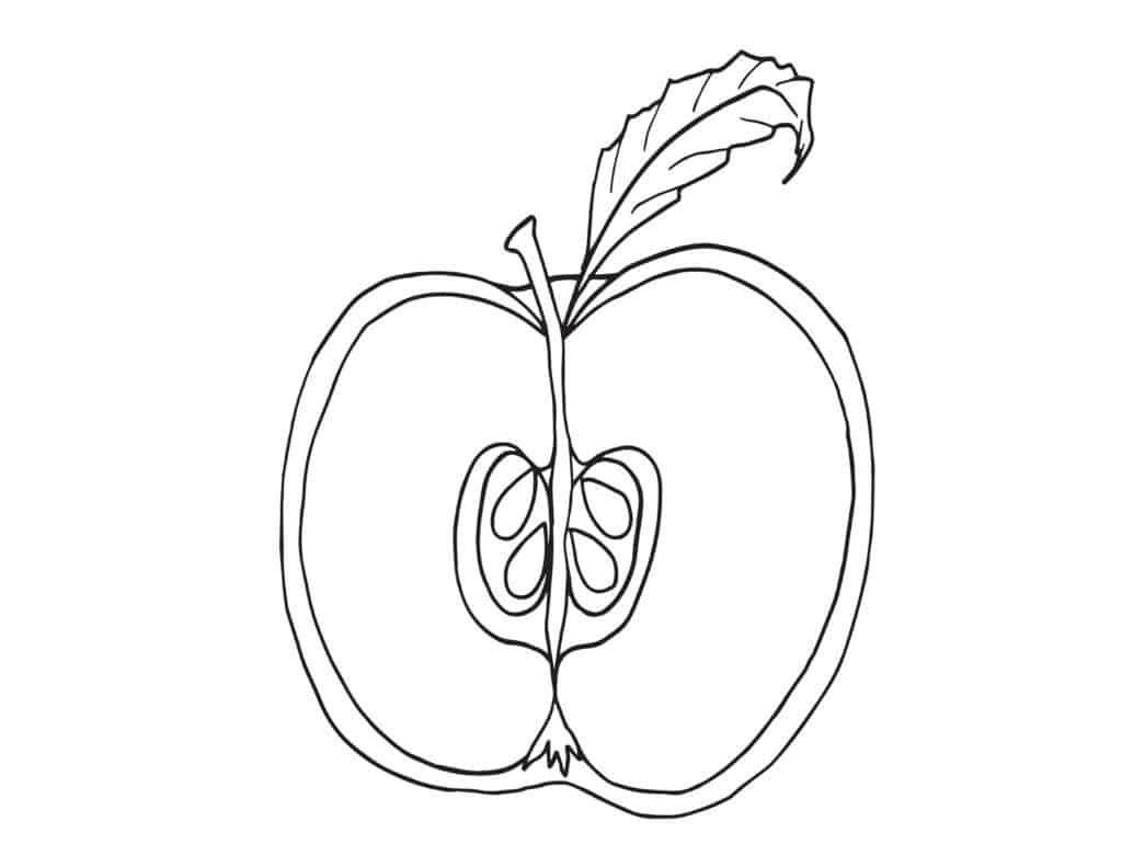 Tranh tô màu quả táo