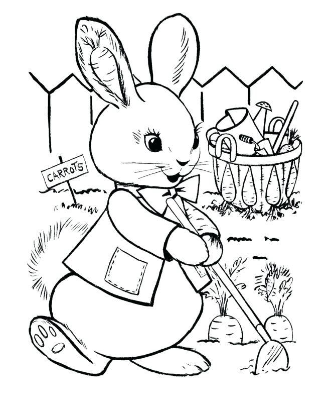 Tranh tô màu thỏ trồng cà rốt