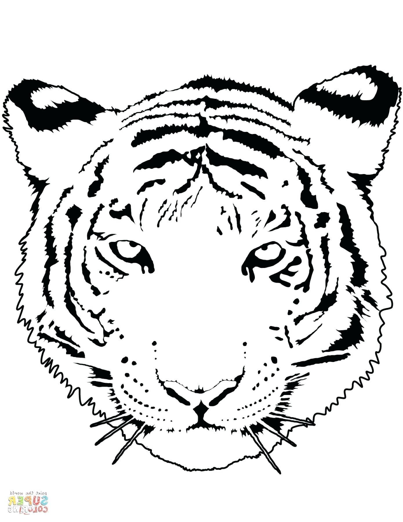 Tranh tô màu trông rất ngầu của chú hổ