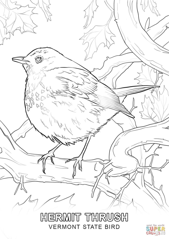 Tranh tô màu trường phái tả thực chim sẻ béo ú đậu cành cây
